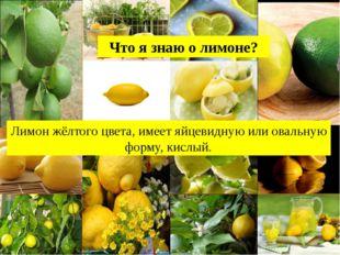 Лимон жёлтого цвета, имеет яйцевидную или овальную форму, кислый. Что я знаю