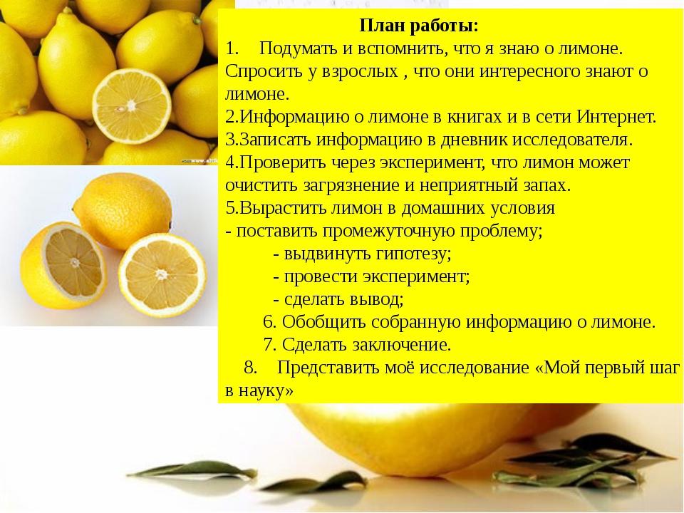 План работы: Подумать и вспомнить, что я знаю о лимоне. Спросить у взрослых...