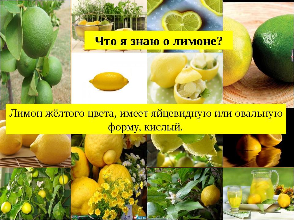 Лимон жёлтого цвета, имеет яйцевидную или овальную форму, кислый. Что я знаю...