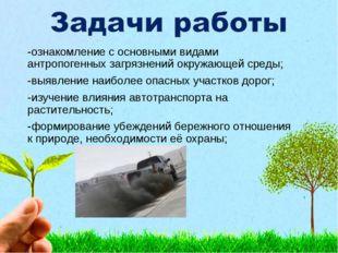 -ознакомление с основными видами антропогенных загрязнений окружающей среды;