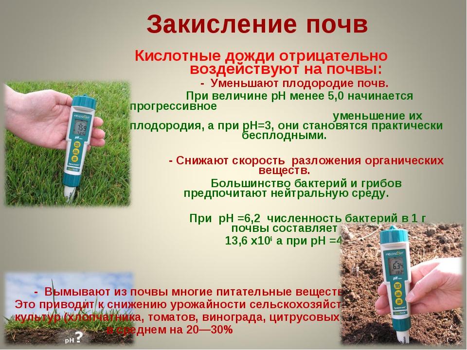 Закисление почв Кислотные дожди отрицательно воздействуют на почвы: - Уменьша...