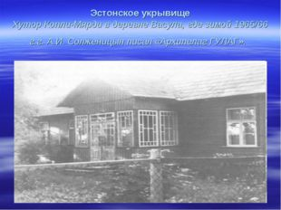 Эстонское укрывище Хутор Копли-Мярди в деревне Васула, где зимой 1965/66 г.г.