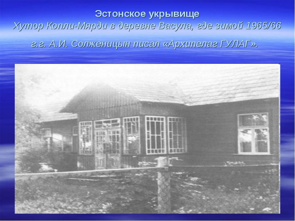 Эстонское укрывище Хутор Копли-Мярди в деревне Васула, где зимой 1965/66 г.г....