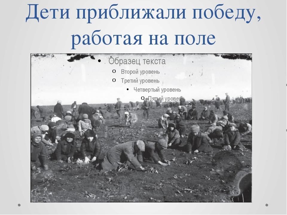 Дети приближали победу, работая на поле
