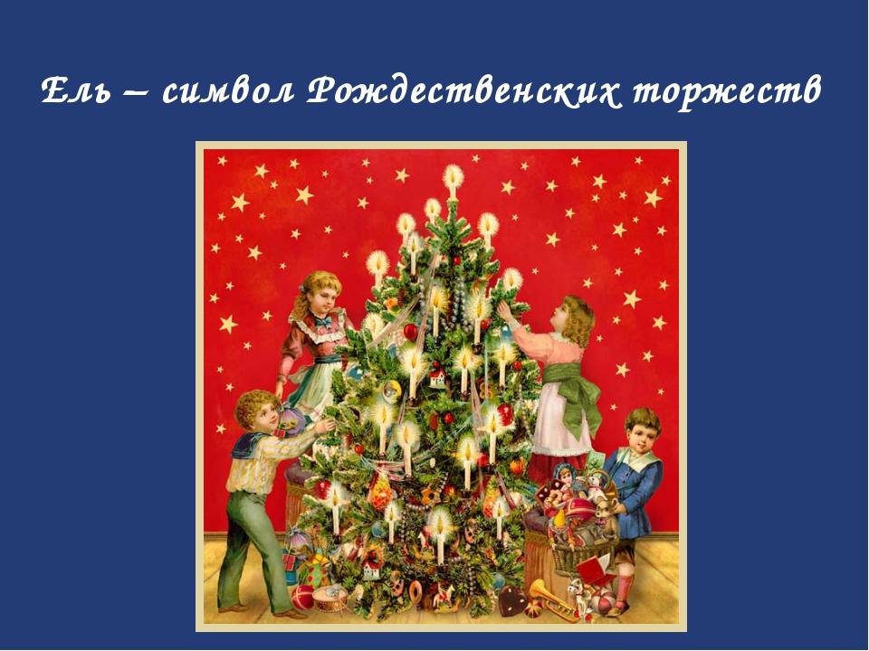 Ель – символ Рождественских торжеств