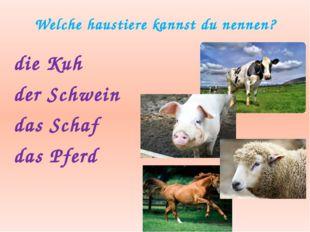 Welche haustiere kannst du nennen? die Kuh der Schwein das Schaf das Pferd