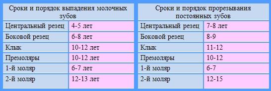 C:\Users\друг\Desktop\зубы\molochnye_zuby_u_detey_vypadenie.jpg