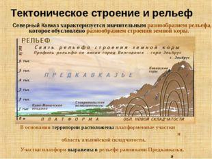 Тектоническое строение и рельеф Северный Кавказ характеризуется значительным