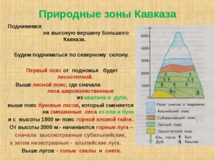 Природные зоны Кавказа Поднимемся на высокую вершину Большого Кавказа. Будем