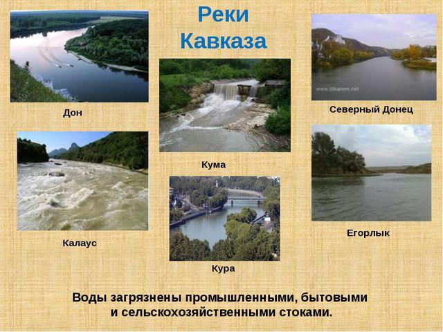 Реки Кавказа Река Калаус Кума Калаус Егорлык Кура Дон Северный Донец Воды заг...