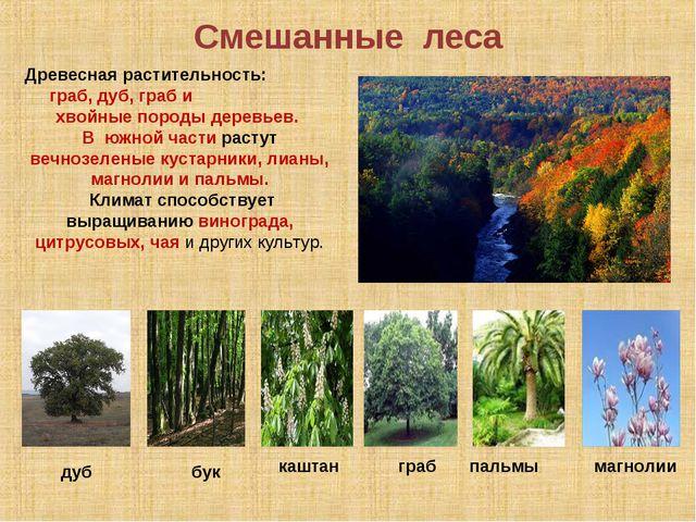 Смешанные леса Древесная растительность: граб, дуб, граб и хвойные породы дер...