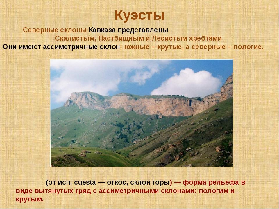 Куэсты Куэ́сты (от исп. cuesta — откос, склон горы) — форма рельефа в виде вы...