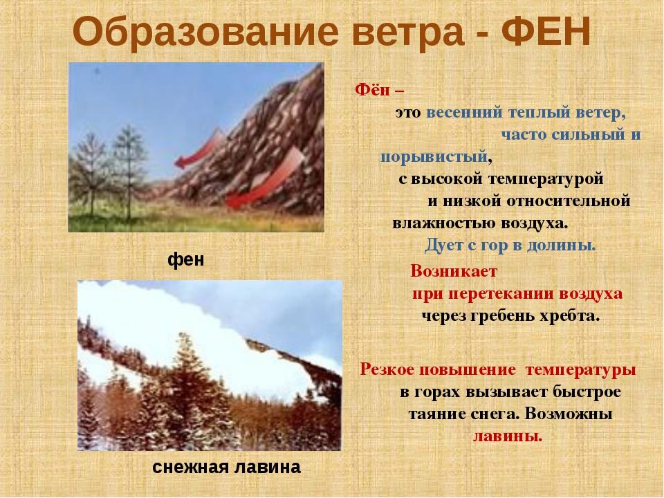 Образование ветра - ФЕН Фён – это весенний теплый ветер, часто сильный и поры...