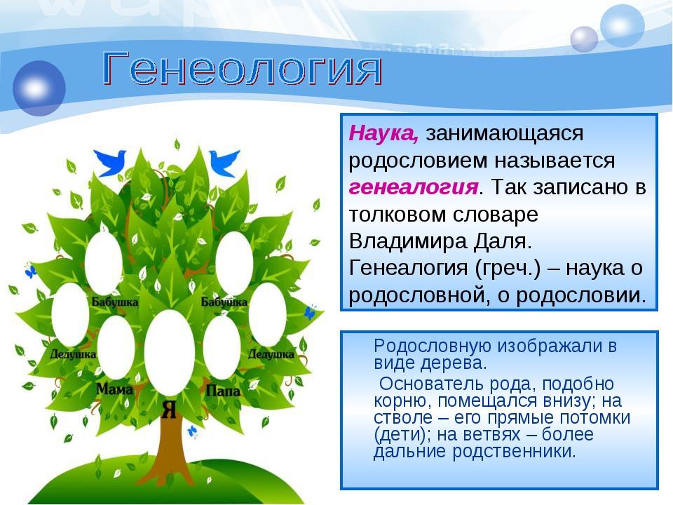 Родословную изображали в виде дерева. Основатель рода, подобно корню, помеща...