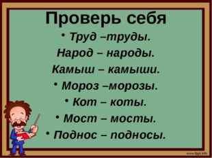 Проверь себя Труд –труды. Народ – народы. Камыш – камыши. Мороз –морозы. Кот