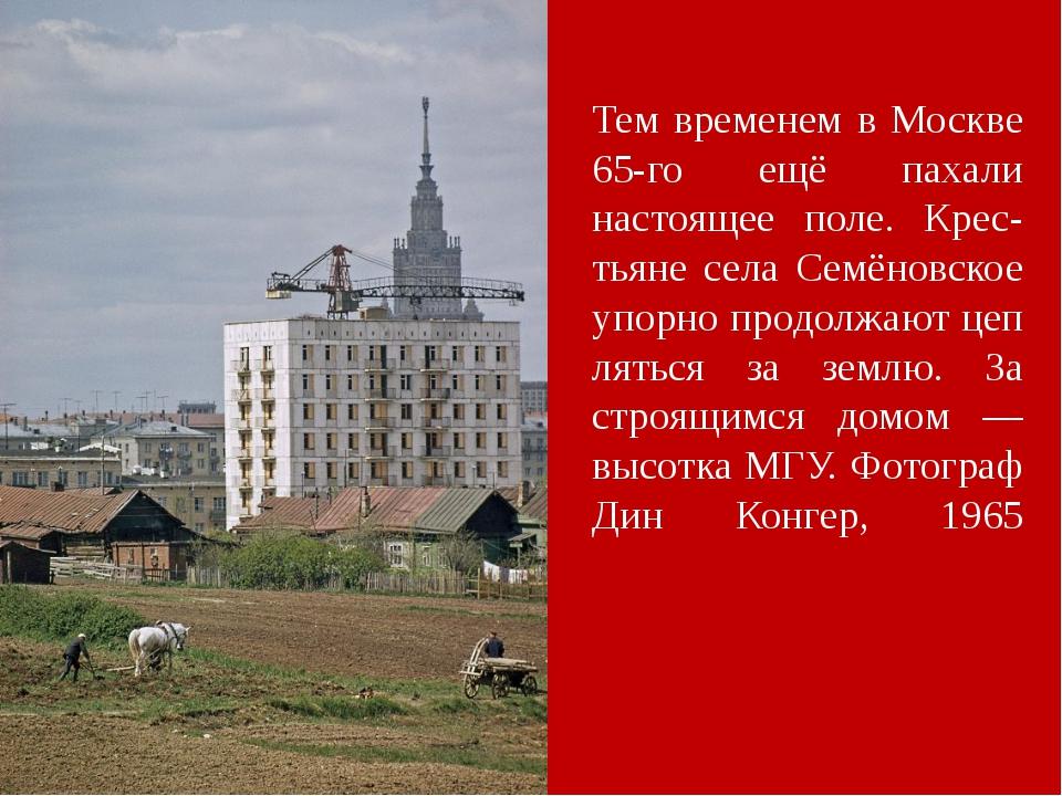 Тем временем в Москве 65-го ещё пахали настоящее поле. Крес-тьяне села Семёно...