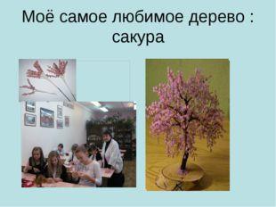 Моё самое любимое дерево : сакура