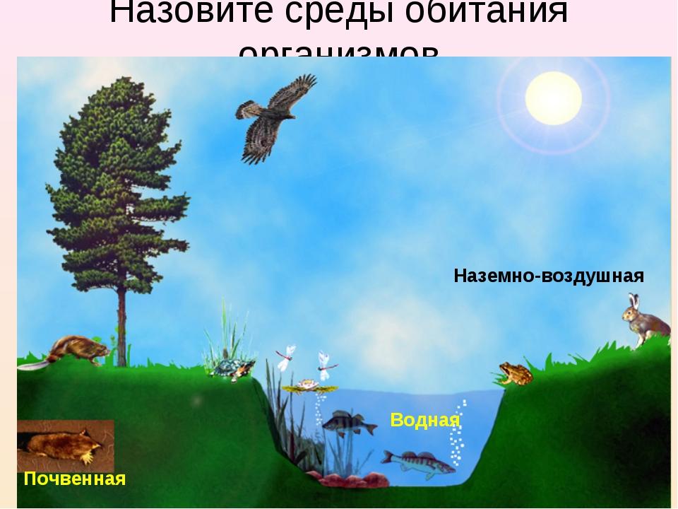 Назовите среды обитания организмов Наземно-воздушная Водная Почвенная