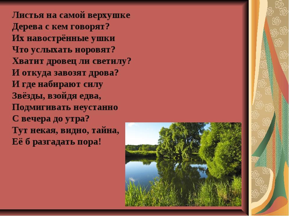 Листья на самой верхушке Дерева с кем говорят? Их навострённые ушки Что услых...
