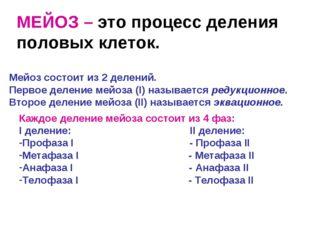 МЕЙОЗ – это процесс деления половых клеток. Мейоз состоит из 2 делений. Перво