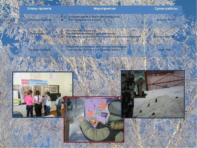 Этапы проекта Мероприятие Сроки работы Подготовительный Изучениежизни и видо...