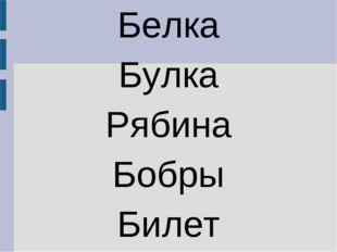 Белка Булка Рябина Бобры Билет
