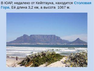 В ЮАР, недалеко от Кейптауна, находится Столовая Гора. Её длина 3,2 км, а выс