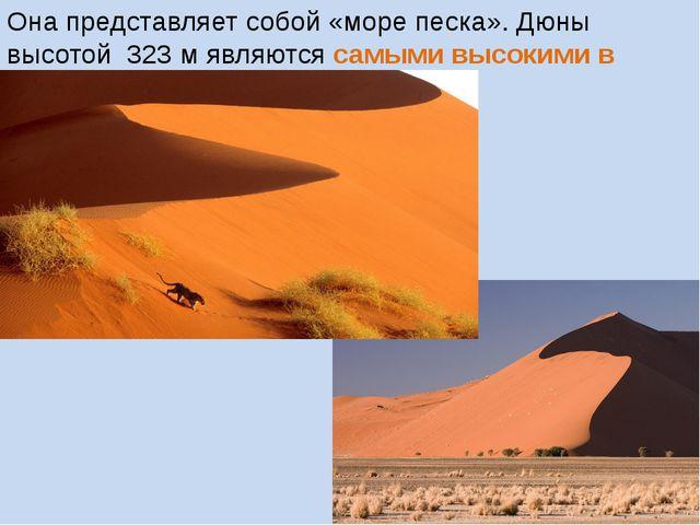 Она представляет собой «море песка». Дюны высотой 323 м являются самыми высок...