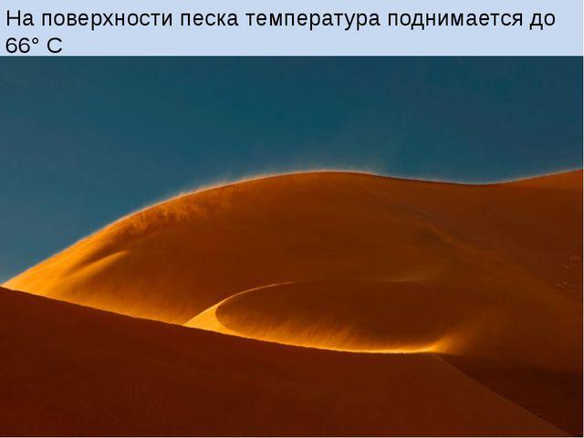 На поверхности песка температура поднимается до 66° С