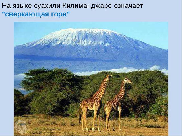 """На языке суахили Килиманджаро означает """"сверкающая гора"""""""