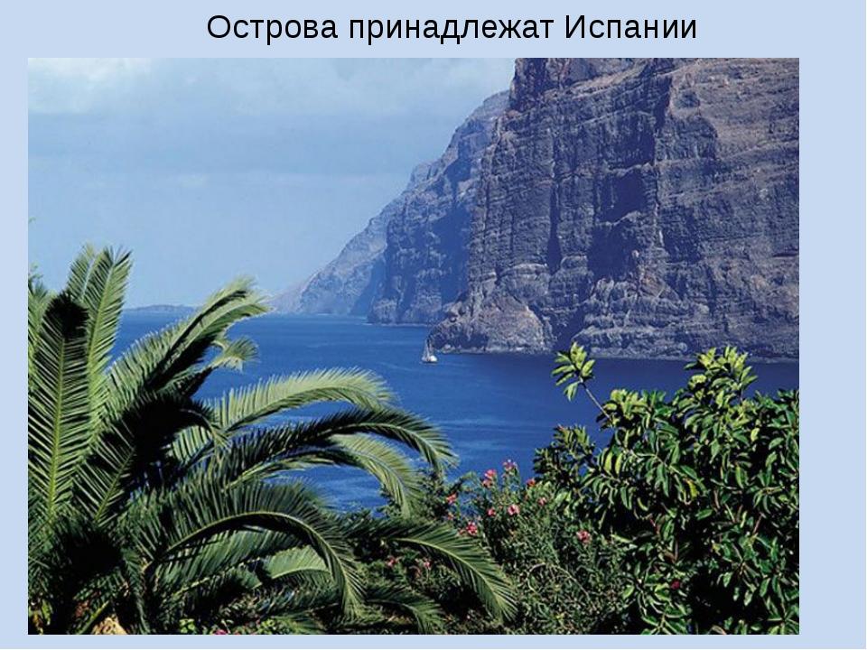 Острова принадлежат Испании