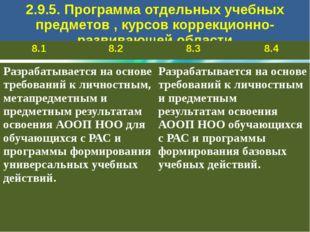 2.9.5. Программа отдельных учебных предметов, курсов коррекционно-развивающе