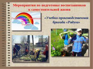 Мероприятия по подготовке воспитанников к самостоятельной жизни «Учебно-прои