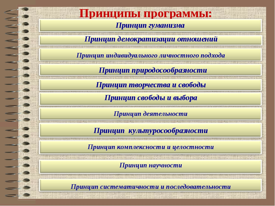Принципы программы: