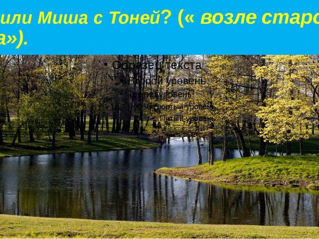 Где жили Миша с Тоней? (« возле старого парка»).