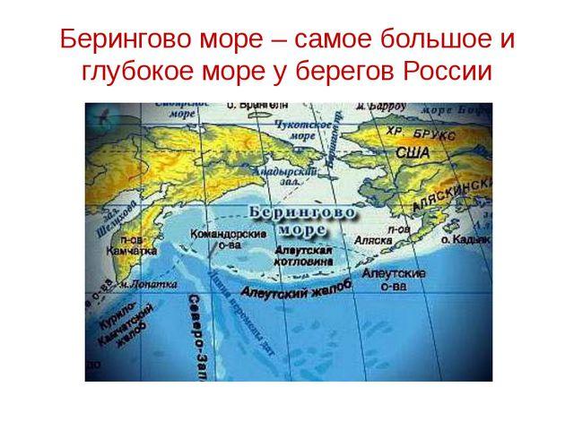 Берингово море – самое большое и глубокое море у берегов России