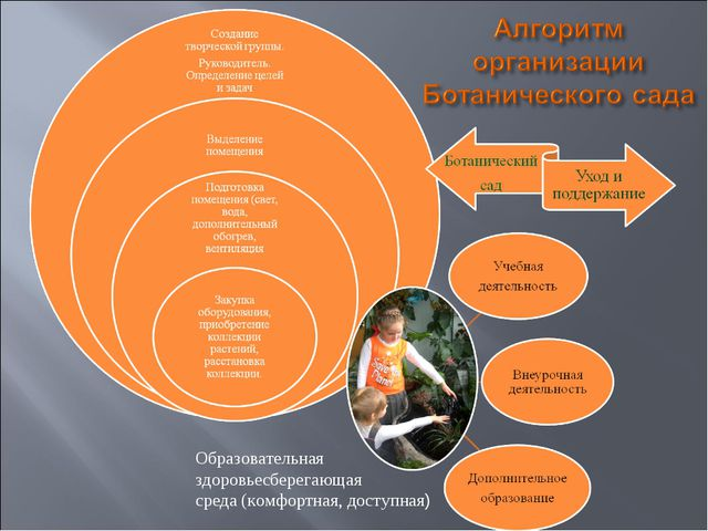 Образовательная здоровьесберегающая среда (комфортная, доступная)