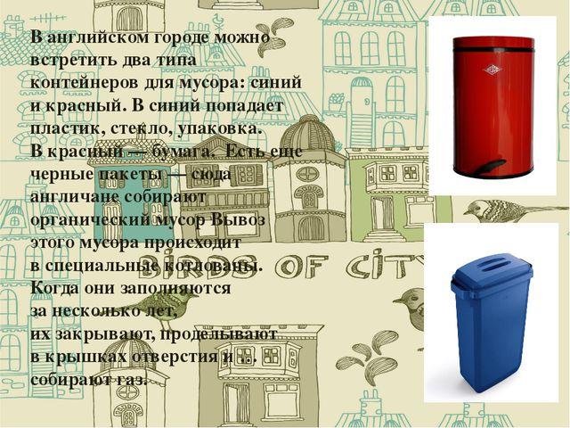 Ванглийском городе можно встретить два типа контейнеров для мусора: синий и...