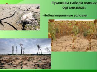 Причины гибели живых организмов: Неблагоприятные условия