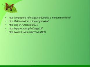 http://volpapery.ru/image/medvedica-s-medvezhonkom/ http://faktzafaktom.ru/de