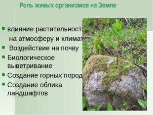 Национальные парки На территории России действует 46 национальных парков. Пер