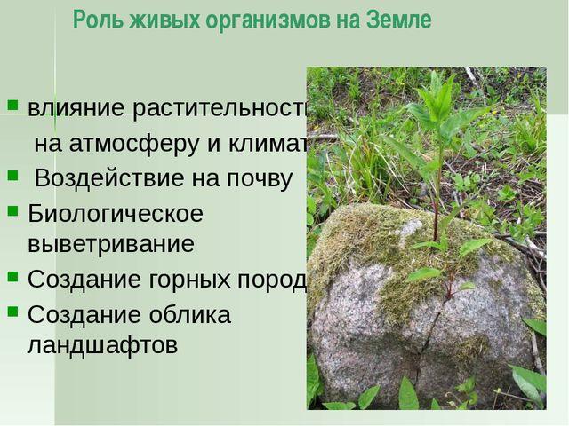 Национальные парки На территории России действует 46 национальных парков. Пер...