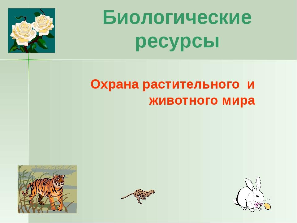 Заповедники Первый заповедник России – Астраханский 1919 г. Большой Арктическ...