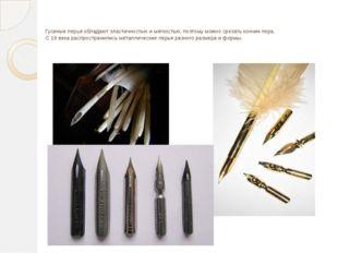 Гусиные перья обладают эластичностью и мягкостью, поэтому можно срезать кончи