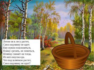 Летом он в лесу растет, Сам в корзинку не идет. Ему нужно поклониться, Ножку