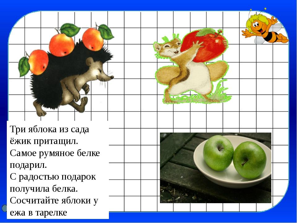 Три яблока из сада ёжик притащил. Самое румяное белке подарил. С радостью под...