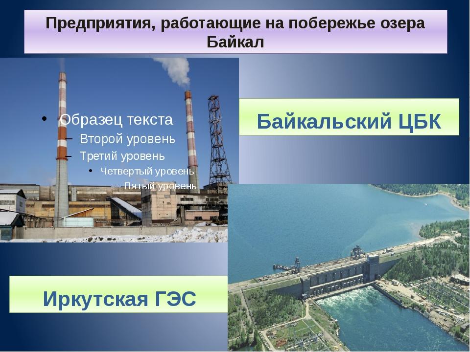 Предприятия, работающие на побережье озера Байкал Иркутская ГЭС Байкальский ЦБК
