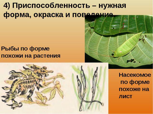 4) Приспособленность – нужная форма, окраска и поведение. Рыбы по форме похож...