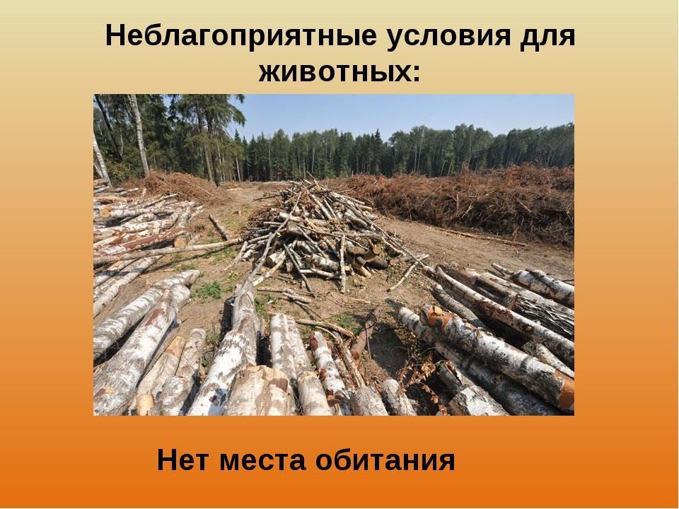 Неблагоприятные условия для животных: Нет места обитания