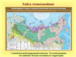 Тайга темнохвойная Самый большой природный комплекс Русской равнины. Он заним